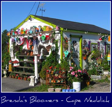 flower-shop-cape-neddick.jpg