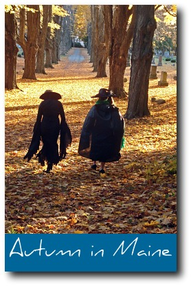 fall-foliage-in-New-England.jpg