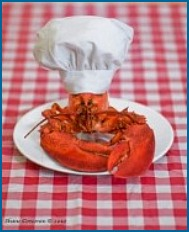 maine-lobster-chef