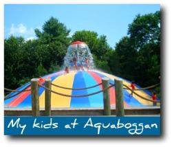 maine-attractions-aquaboggan.jpg