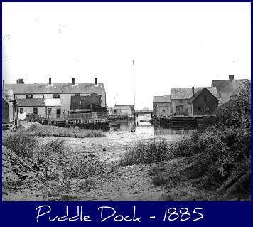 puddle-dock