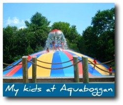 maine-attractions-aquaboggan.jpg