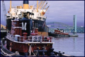 pictures-of-maine_tugboats