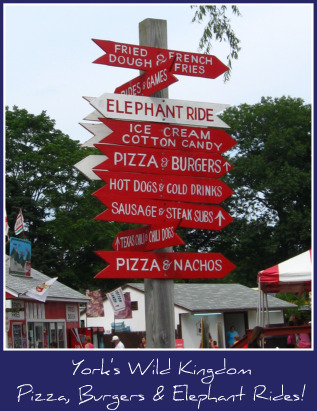 Maine-zoo-sign.jpg